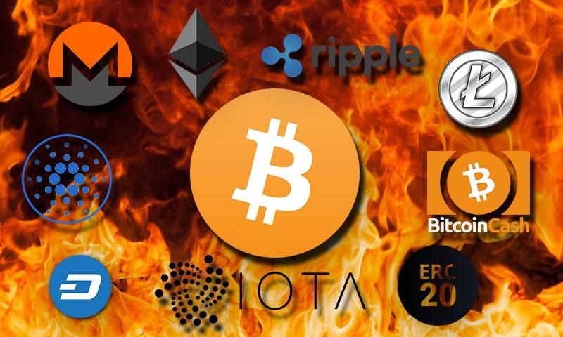 Altcoin nóng lên sau sự sụt giảm của Bitcoin