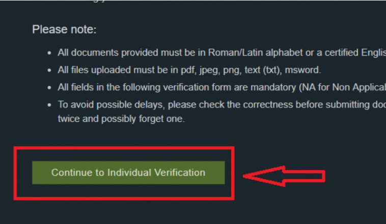 "Nhấn ""Continue to Individual Verification"""