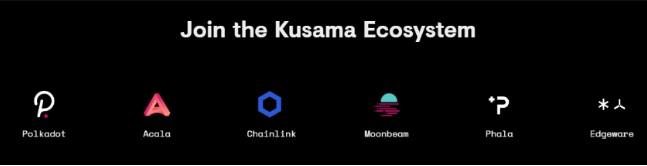 Các đối tác của Kusama